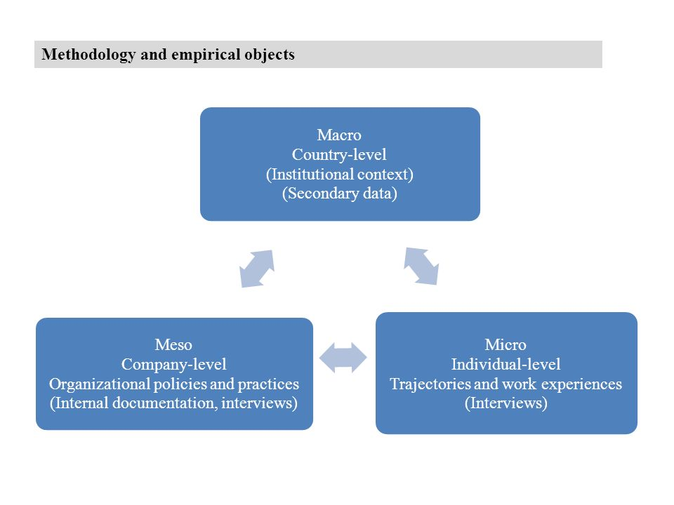 Methodology and empirical objects Macro Country-level (Institutional context) (Secondary data) Micro Individual-level Trajectories and work experiences (Interviews) Meso Company-level Organizational policies and practices (Internal documentation, interviews)