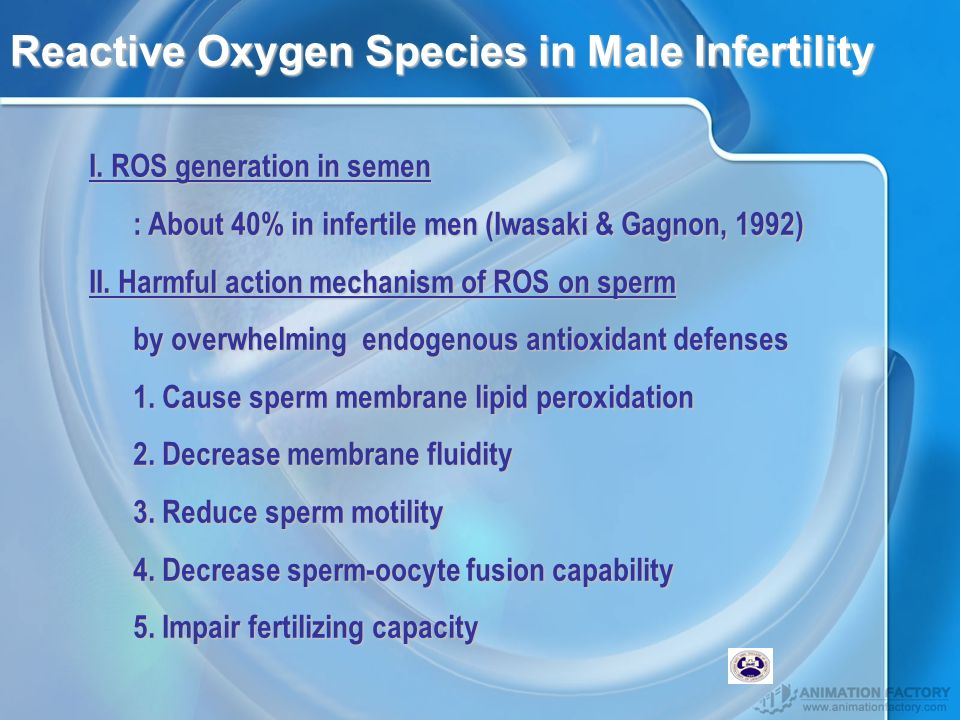 Reactive Oxygen Species in Male Infertility I.