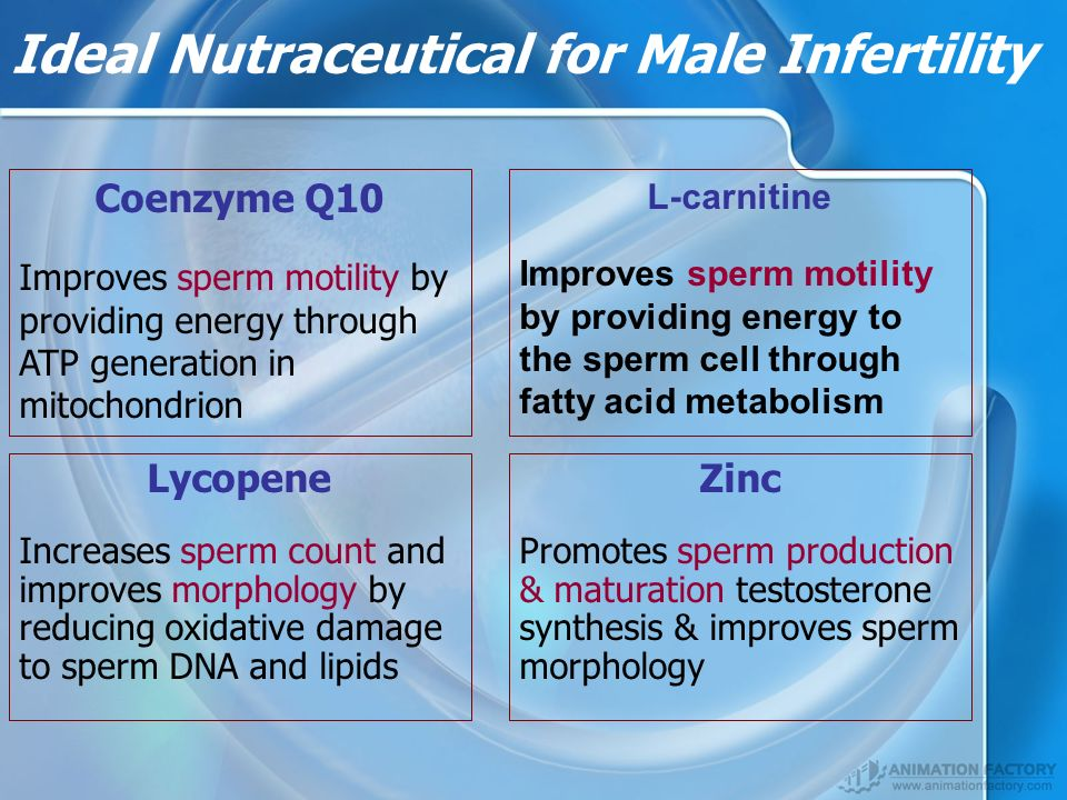 L-carnitine Improves sperm motility by providing energy to the sperm cell through fatty acid metabolism Zinc Promotes sperm production & maturation testosterone synthesis & improves sperm morphology Ideal Nutraceutical for Male Infertility Coenzyme Q10 Improves sperm motility by providing energy through ATP generation in mitochondrion Lycopene Increases sperm count and improves morphology by reducing oxidative damage to sperm DNA and lipids