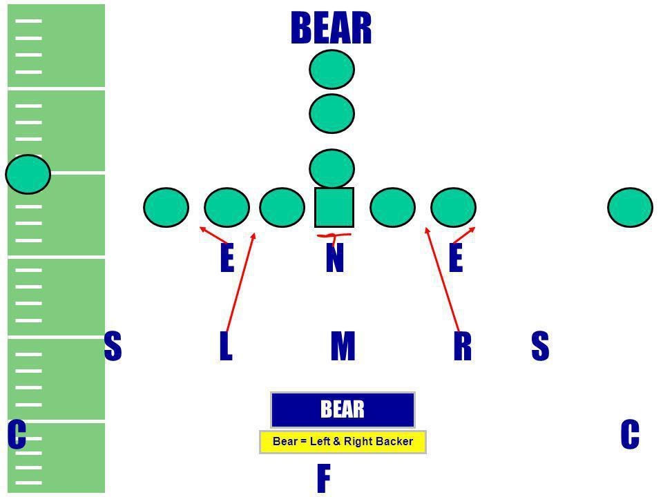 BEAR E N E S L M R S C F BEAR Bear = Left & Right Backer