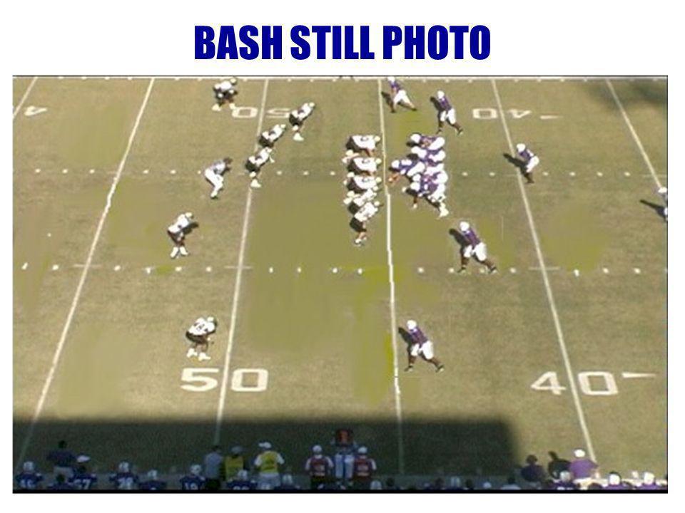 BASH STILL PHOTO