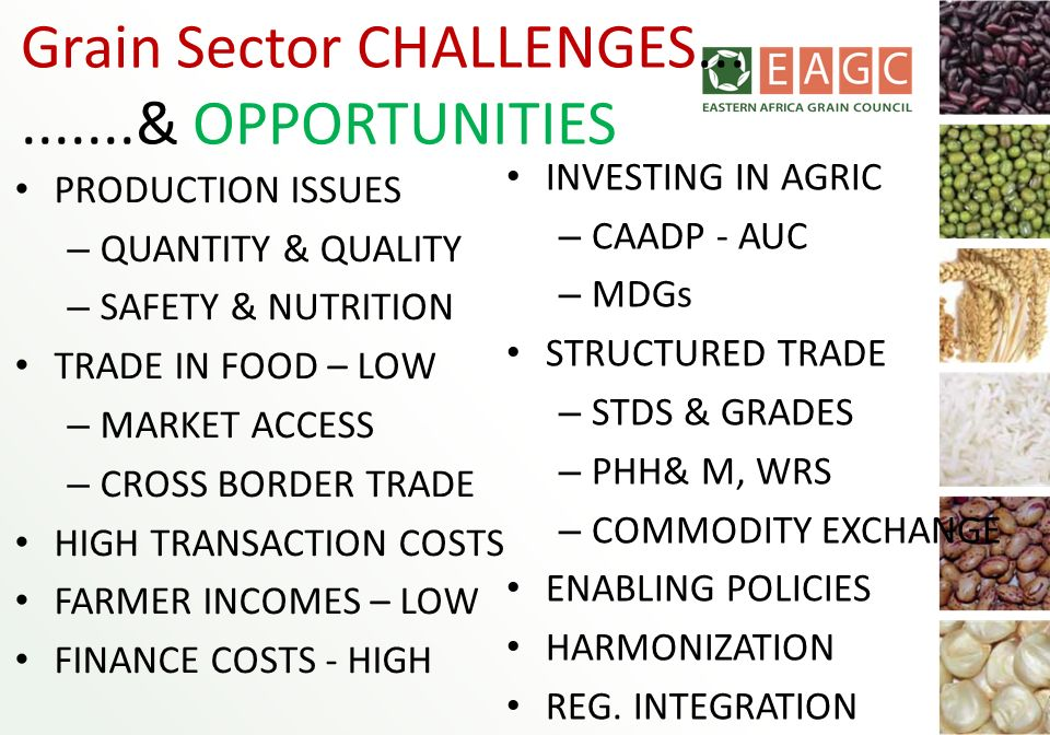 Grain Sector CHALLENGES..........& OPPORTUNITIES PRODUCTION ISSUES – QUANTITY & QUALITY – SAFETY & NUTRITION TRADE IN FOOD – LOW – MARKET ACCESS – CRO