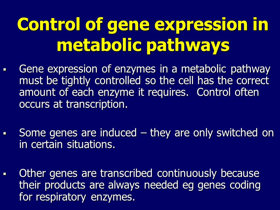 Control of gene expression in metabolic pathways Gene expression of enzymes in a metabolic pathway must be tightly controlled so the cell has the corr