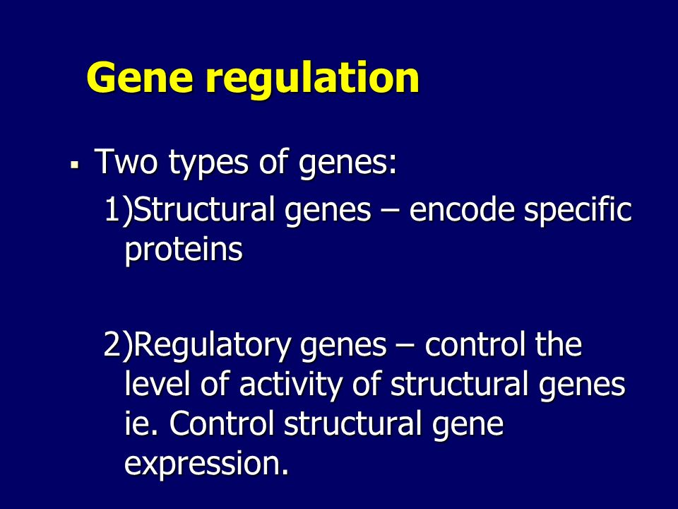 Gene regulation Two types of genes: Two types of genes: 1)Structural genes – encode specific proteins 2)Regulatory genes – control the level of activi