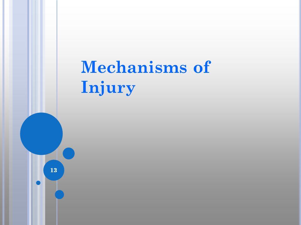 13 Mechanisms of Injury 13