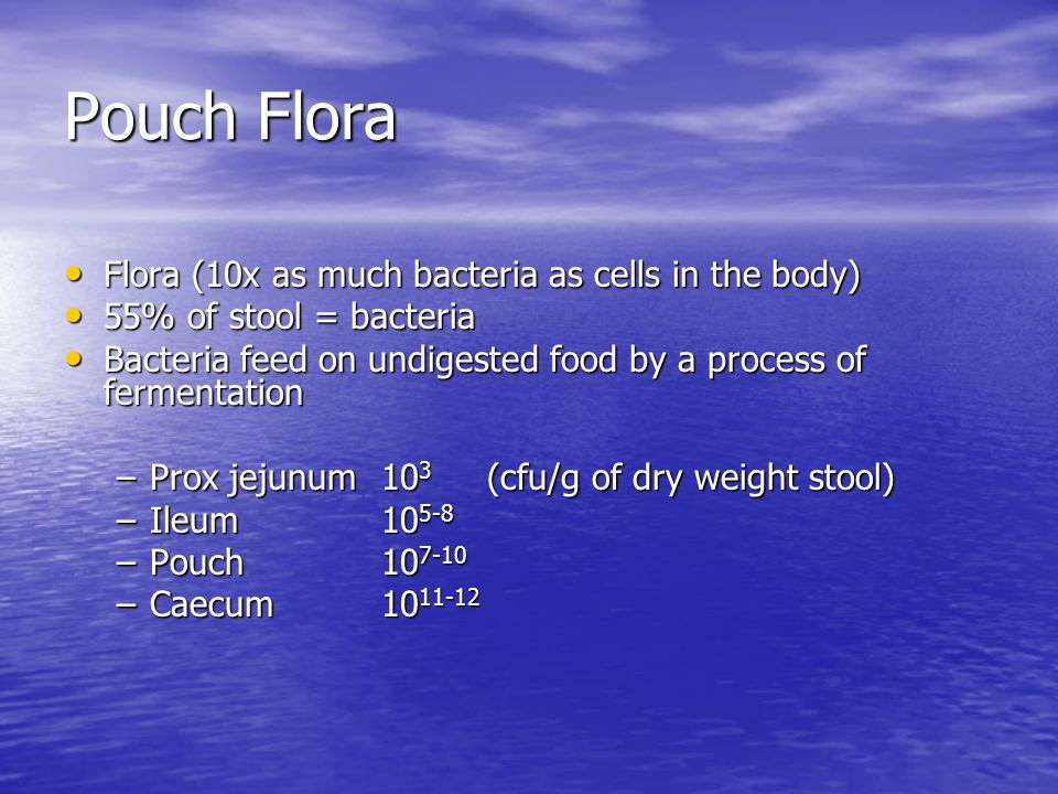 Pouch Flora Flora (10x as much bacteria as cells in the body) Flora (10x as much bacteria as cells in the body) 55% of stool = bacteria 55% of stool =