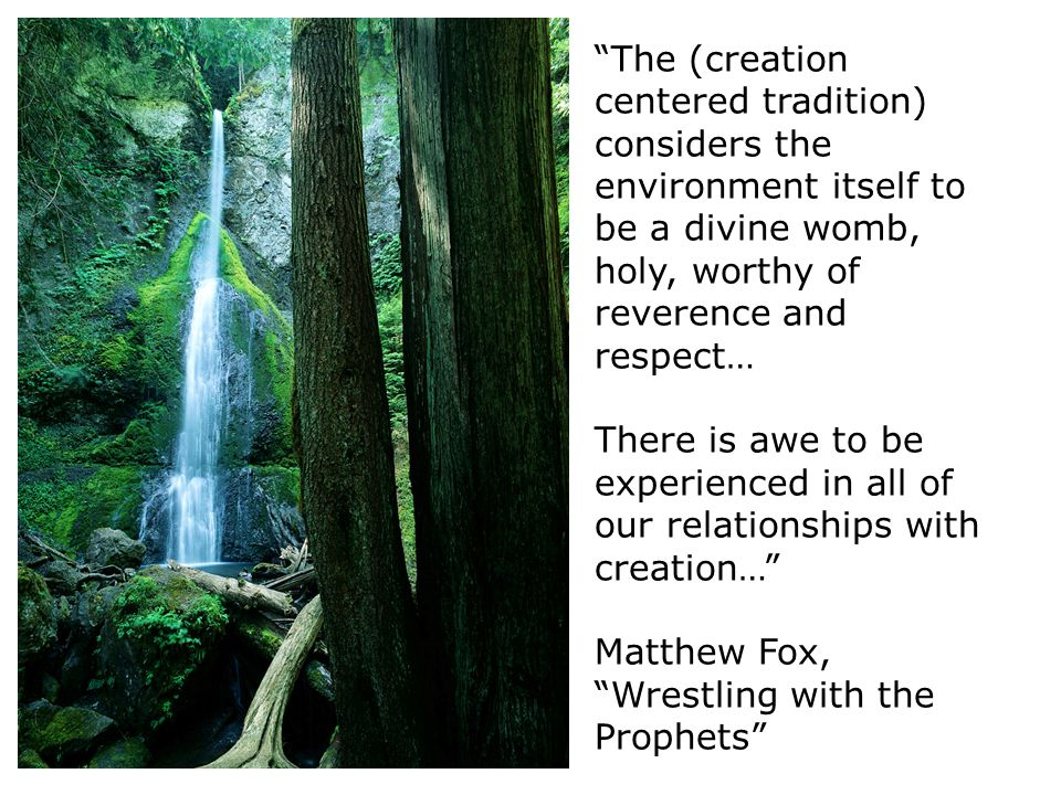 The (creation centered tradition) considers the environment itself to be a divine womb, holy, worthy of reverence and respect… There is awe to be experienced in all of our relationships with creation… Matthew Fox, Wrestling with the Prophets