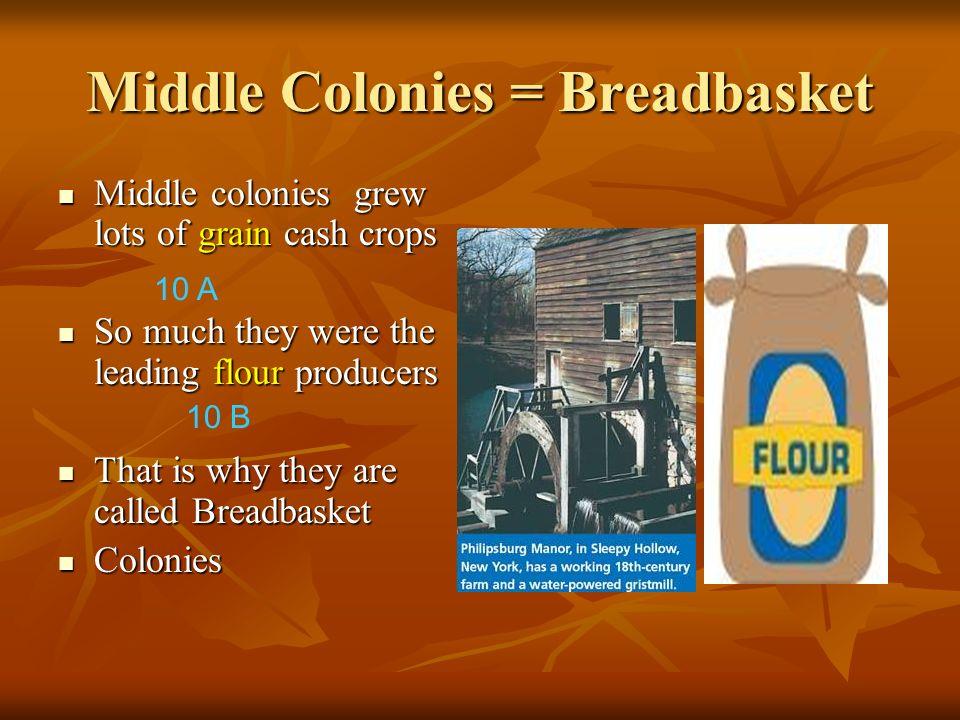 Middle Colonies = Breadbasket Middle colonies grew lots of grain cash crops Middle colonies grew lots of grain cash crops So much they were the leadin