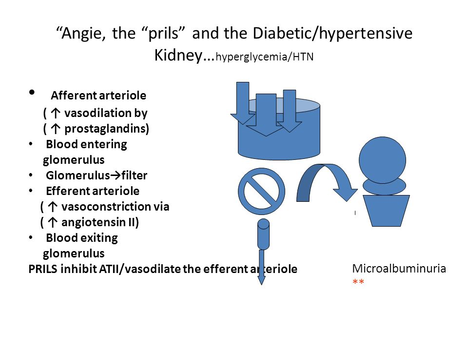 Angie, the prils and the Diabetic/hypertensive Kidney… hyperglycemia/HTN Afferent arteriole ( vasodilation by ( prostaglandins) Blood entering glomeru