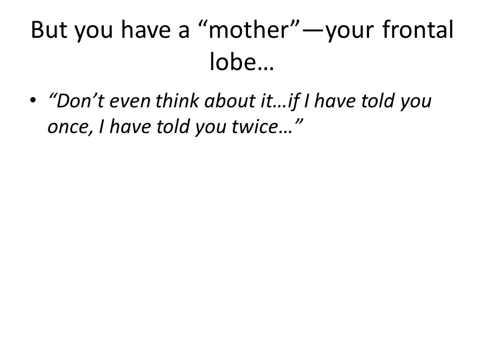 But you have a motheryour frontal lobe… Dont even think about it…if I have told you once, I have told you twice…