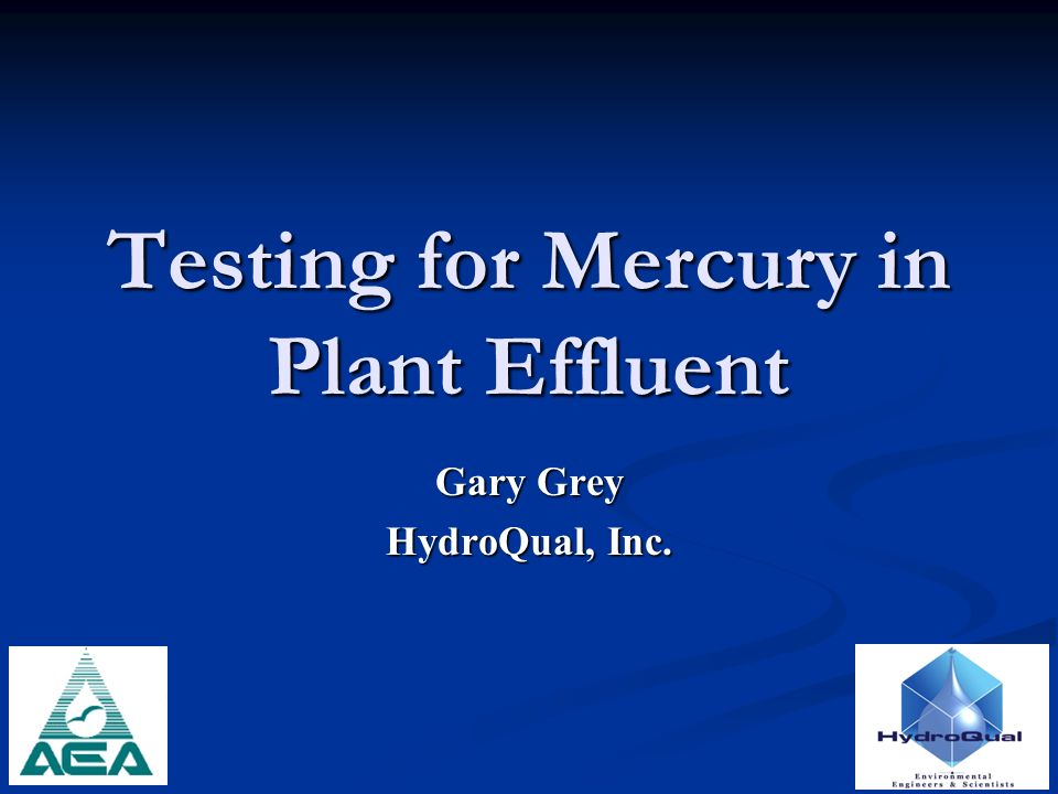 Testing for Mercury in Plant Effluent Gary Grey HydroQual, Inc.