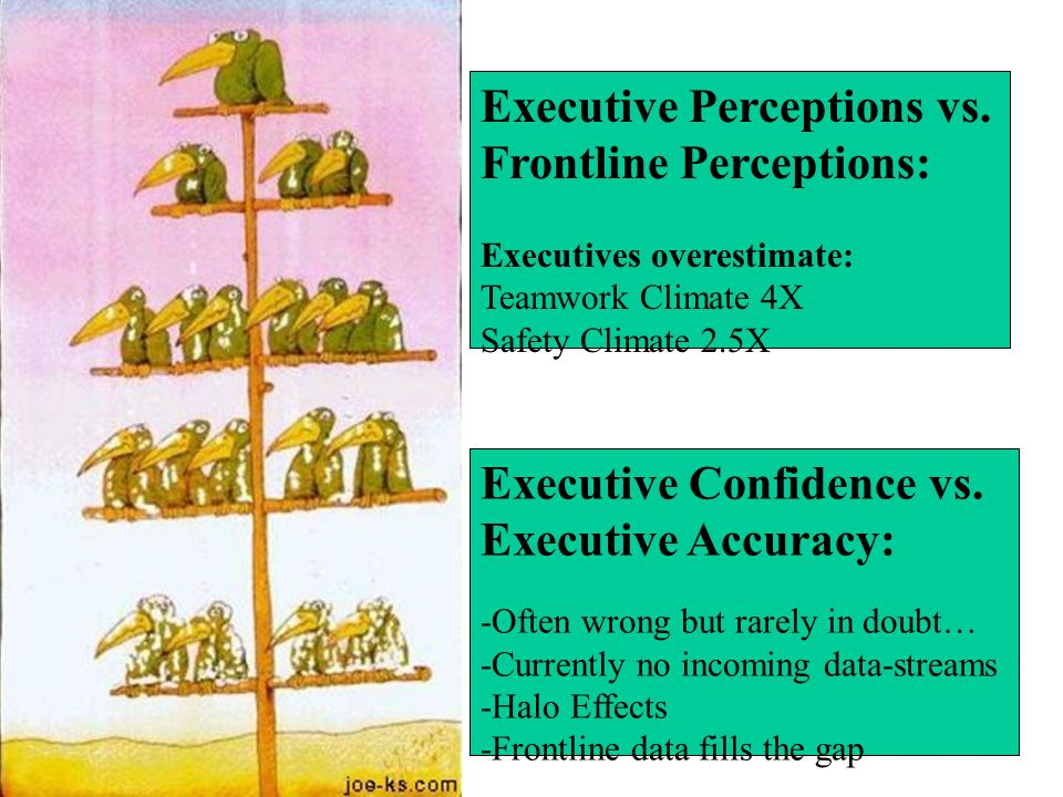 Executive Perceptions vs. Frontline Perceptions: Executives overestimate: Teamwork Climate 4X Safety Climate 2.5X Executive Confidence vs. Executive A
