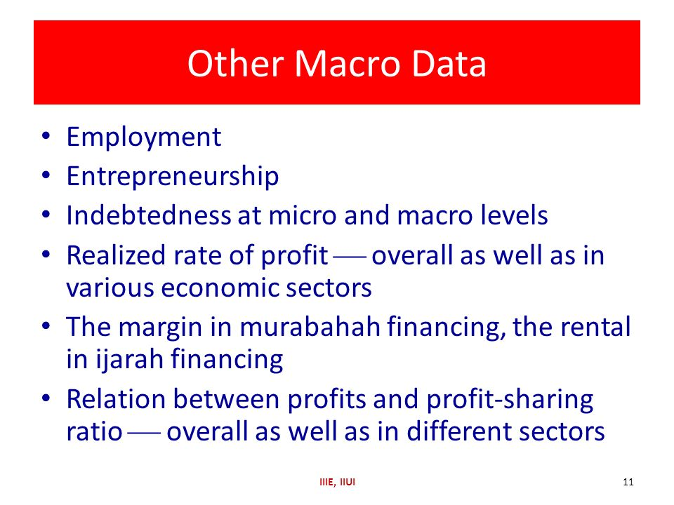 Other Macro Data Employment Entrepreneurship Indebtedness at micro and macro levels Realized rate of profit overall as well as in various economic sec