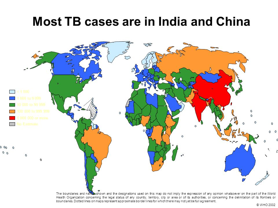 Most TB cases are in India and China 10 000 to 99 999 100 000 to 999 999 1 000 000 or more < 1 000 1 000 to 9 999 No Estimate The boundaries and names shown and the designations used on this map do not imply the expression of any opinion whatsoever on the part of the World Health Organization concerning the legal status of any country, territory, city or area or of its authorities, or concerning the delimitation of its frontiers or boundaries.
