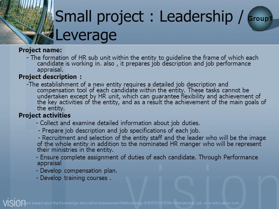 Created based upon the Knowledge Innovation Assessment Methodology © ENTOVATION International Ltd. www.entovation.com Small project : Leadership / Lev