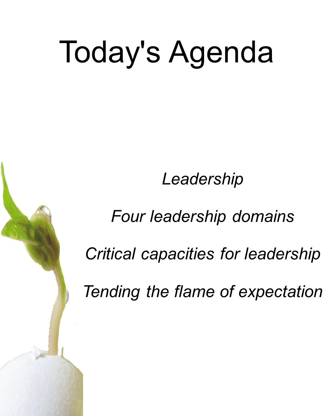 Today's Agenda Leadership Four leadership domains Critical capacities for leadership Tending the flame of expectation