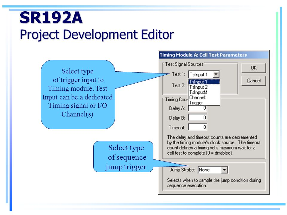 SR192A Project Development Editor Select type of trigger input to Timing module.