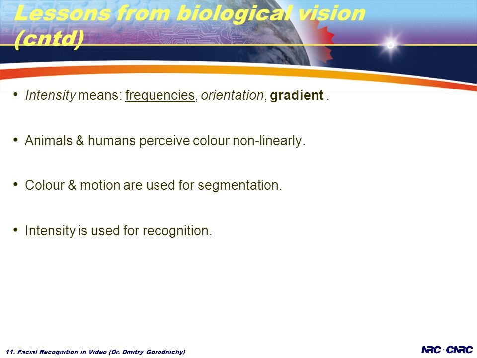 11. Facial Recognition in Video (Dr. Dmitry Gorodnichy) Lessons from biological vision (cntd) Intensity means: frequencies, orientation, gradient. Ani
