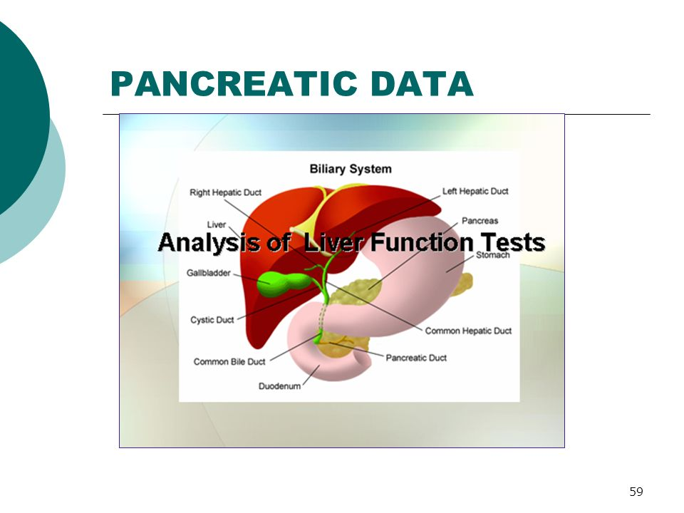 59 PANCREATIC DATA