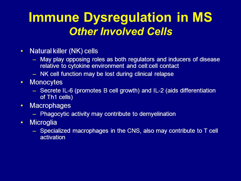 Immune Dysregulation in MS Other Involved Cells Natural killer (NK) cells –May play opposing roles as both regulators and inducers of disease relative