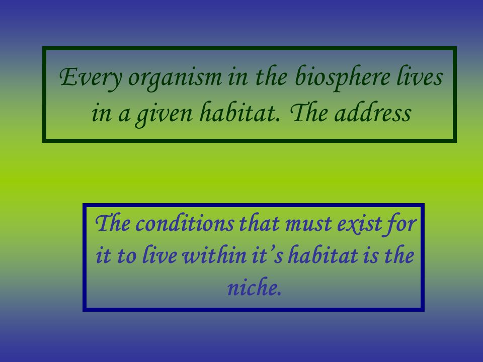 Every organism in the biosphere lives in a given habitat. The address The conditions that must exist for it to live within its habitat is the niche.