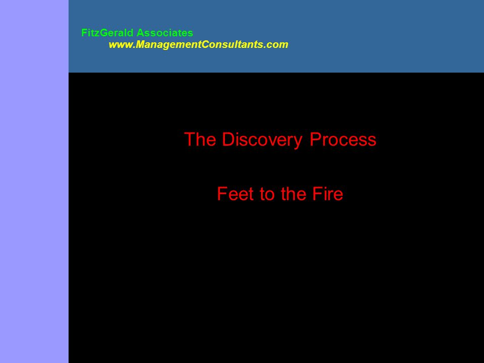 FitzGerald Associates www.ManagementConsultants.com The Discovery Process Feet to the Fire