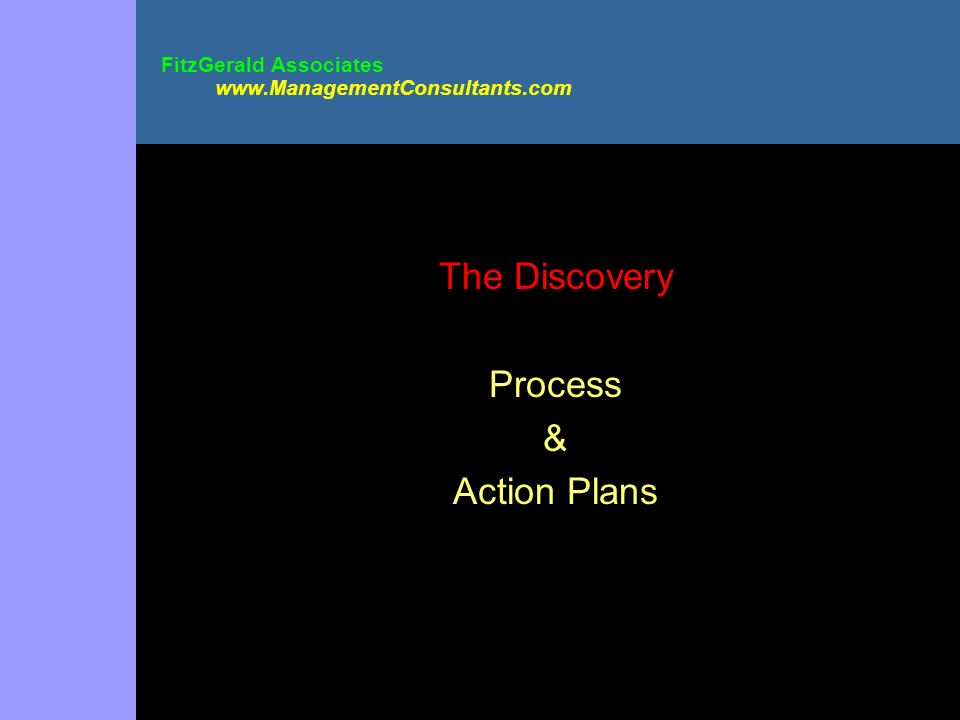 FitzGerald Associates www.ManagementConsultants.com The Discovery Process & Action Plans