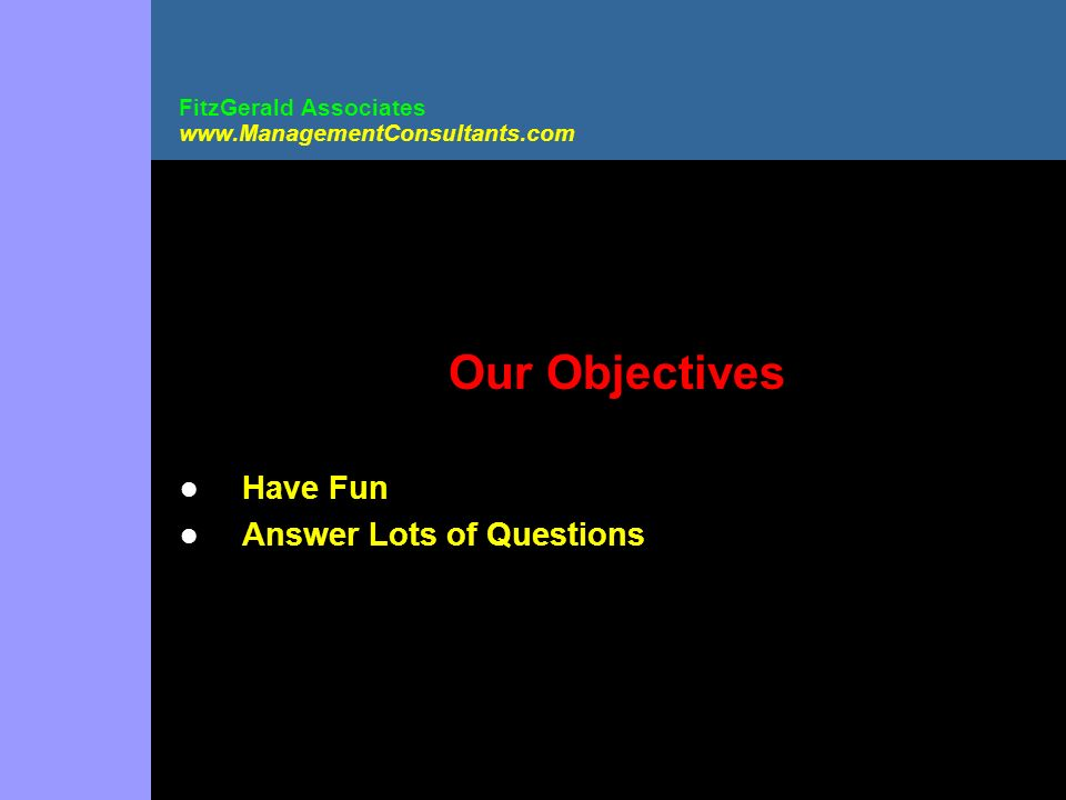 FitzGerald Associates www.ManagementConsultants.com Our Objectives Have Fun Answer Lots of Questions