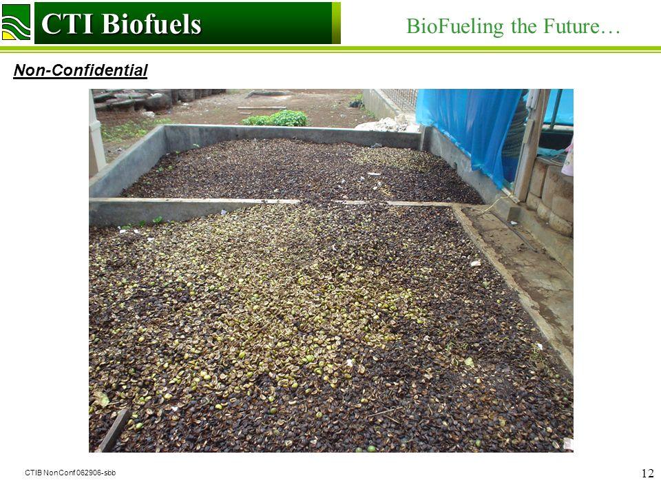 CTI Biofuels BioFueling the Future… Non-Confidential CTI Biofuels CTIB NonConf 062906-sbb 12