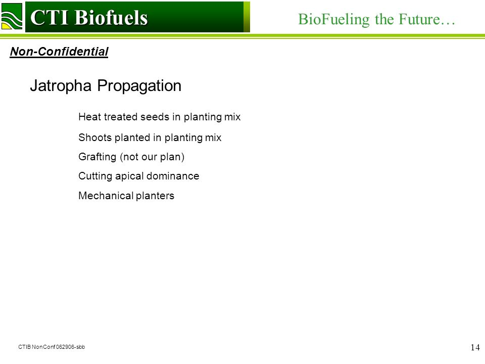 CTI Biofuels BioFueling the Future… Non-Confidential CTI Biofuels CTIB NonConf 062906-sbb 14 Jatropha Propagation Heat treated seeds in planting mix Shoots planted in planting mix Grafting (not our plan) Cutting apical dominance Mechanical planters