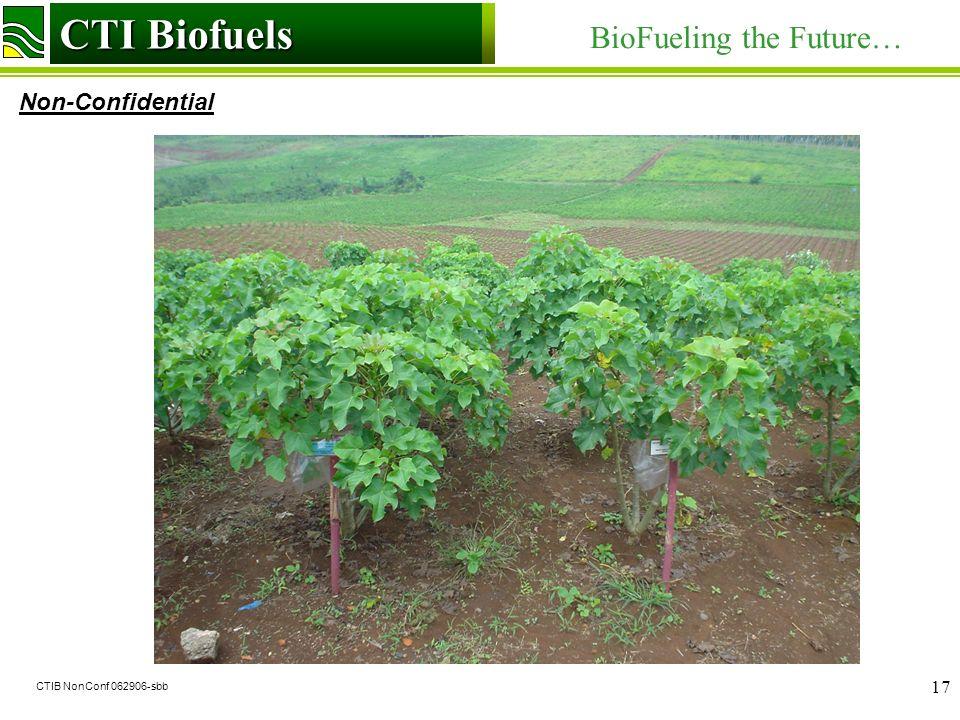 CTI Biofuels BioFueling the Future… Non-Confidential CTI Biofuels CTIB NonConf 062906-sbb 17