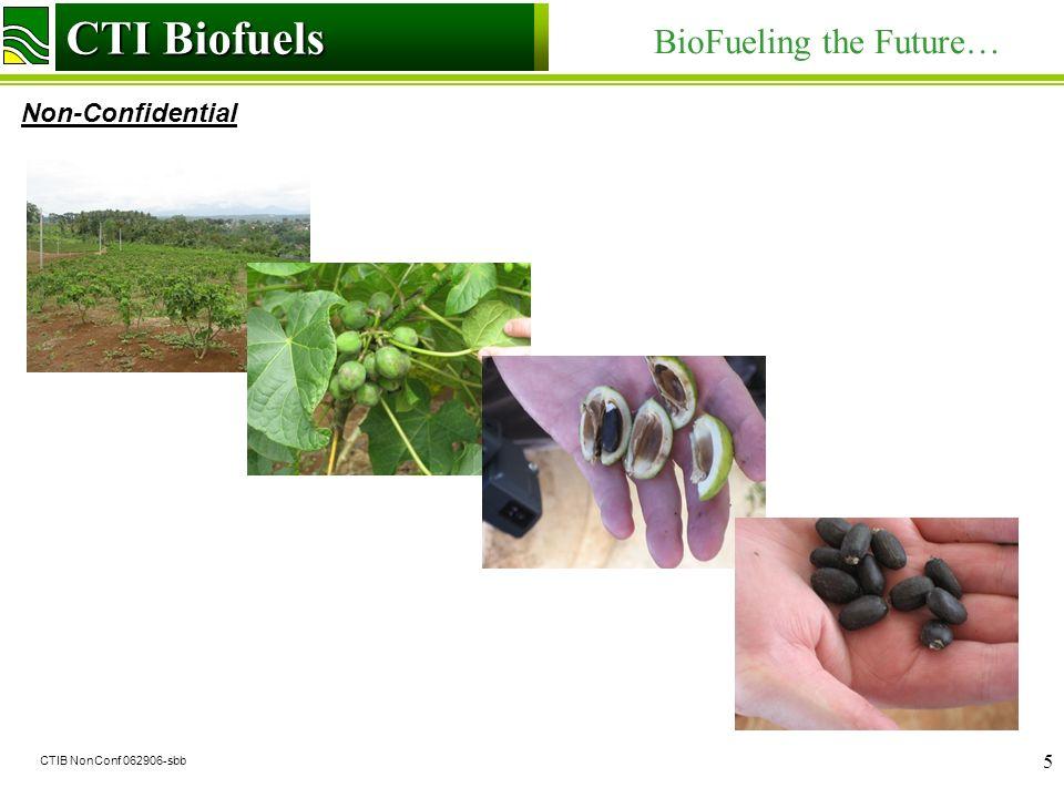 CTI Biofuels BioFueling the Future… Non-Confidential CTI Biofuels CTIB NonConf 062906-sbb 5