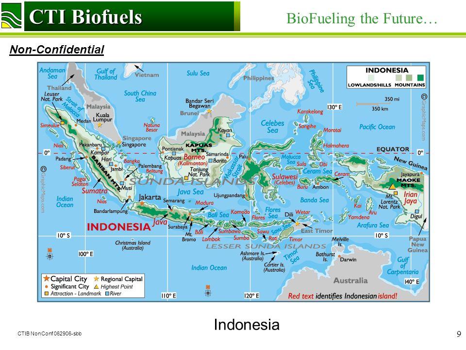 CTI Biofuels BioFueling the Future… Non-Confidential CTI Biofuels CTIB NonConf 062906-sbb 9 Indonesia