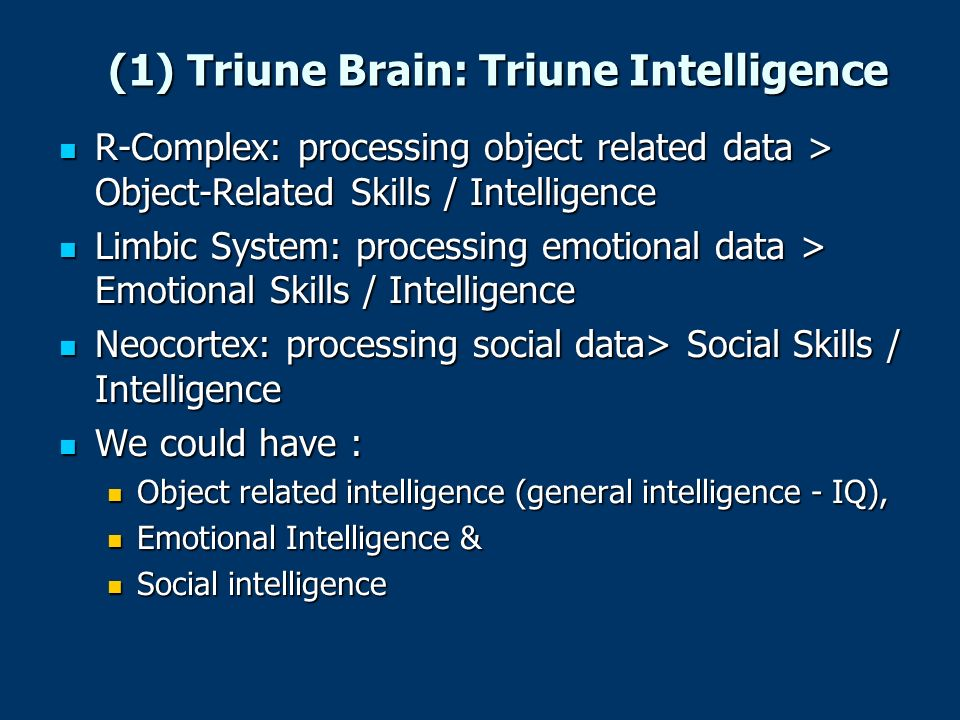 (1) Triune Brain: Triune Intelligence R-Complex: processing object related data > Object-Related Skills / Intelligence R-Complex: processing object re