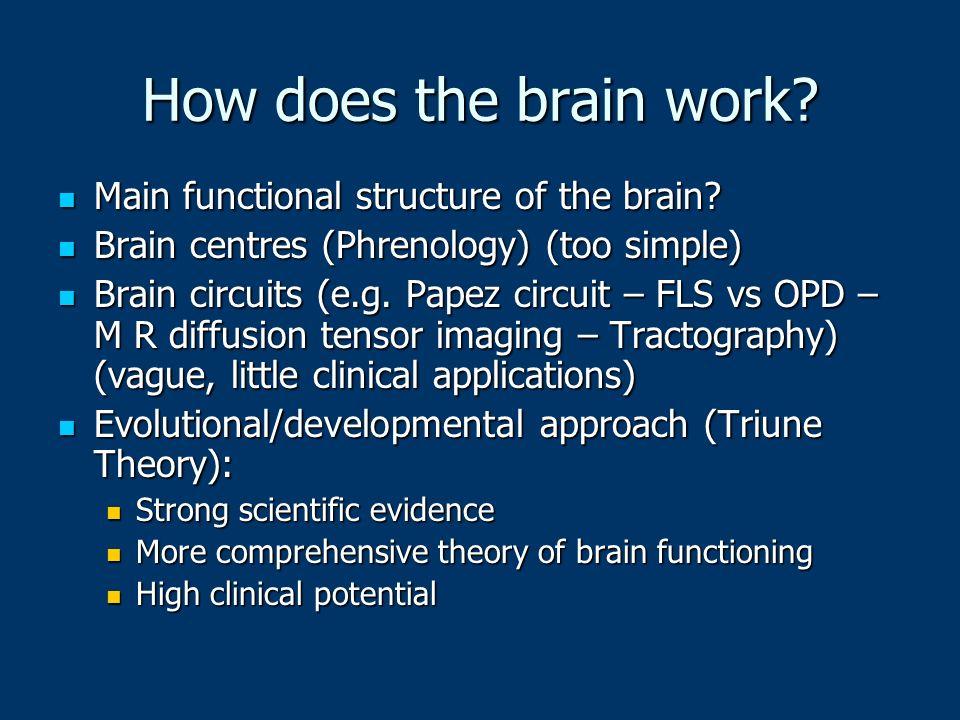 How does the brain work? Main functional structure of the brain? Main functional structure of the brain? Brain centres (Phrenology) (too simple) Brain