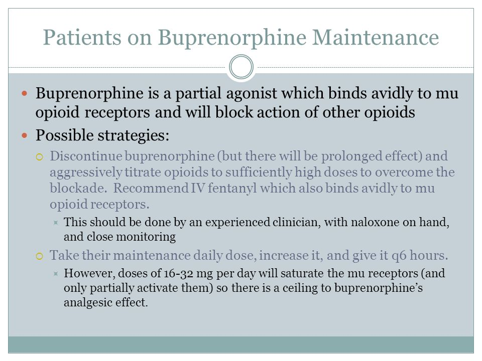Patients on Buprenorphine Maintenance Buprenorphine is a partial agonist which binds avidly to mu opioid receptors and will block action of other opio