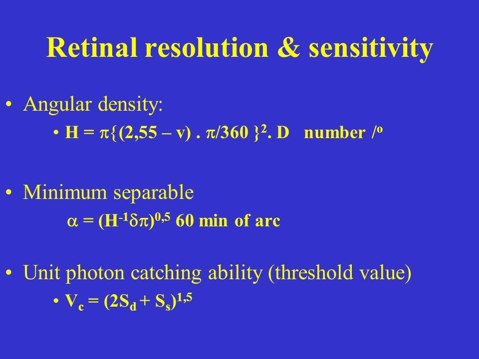 Retinal resolution & sensitivity Angular density: H = (2,55 – v).