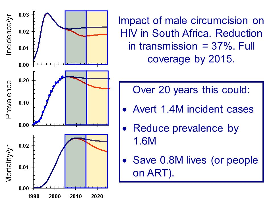 Impact of male circumcision on HIV in South Africa.