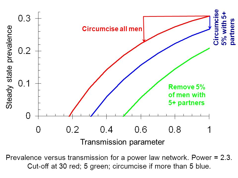 Transmission parameter Steady state prevalence Circumcise all men Circumcise 5% with 5+ partners Prevalence versus transmission for a power law networ