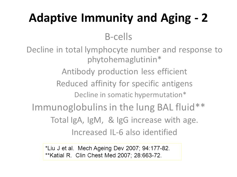 Adaptive Immunity and Aging - 2 B-cells Decline in total lymphocyte number and response to phytohemaglutinin* Antibody production less efficient Reduced affinity for specific antigens Decline in somatic hypermutation* Immunoglobulins in the lung BAL fluid** Total IgA, IgM, & IgG increase with age.