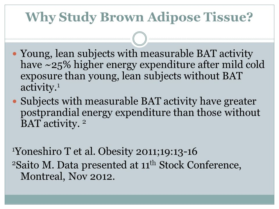 Why Study Brown Adipose Tissue? Young, lean subjects with measurable BAT activity have ~25% higher energy expenditure after mild cold exposure than yo
