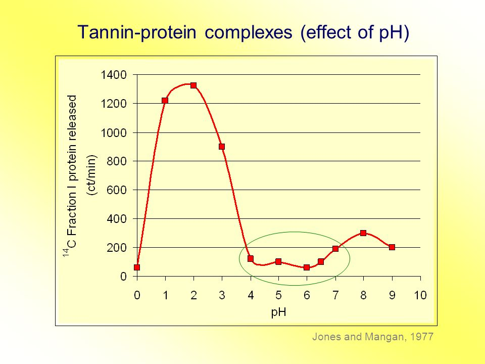 Tannin-protein complexes (effect of pH) Jones and Mangan, 1977