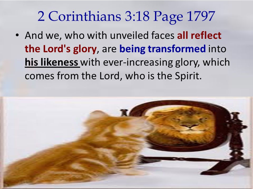 2 Corinthians 3:18 Page 1797 And we, who with unveiled faces all reflect the Lord's glory, are being transformed into his likeness with ever-increasin