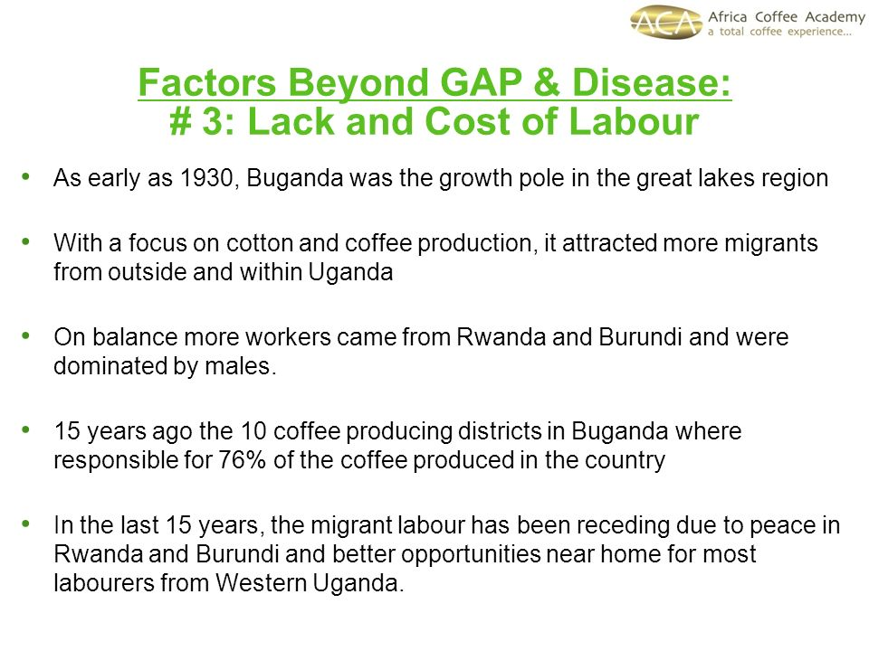 Factors Beyond GAP & Disease: # 3: Lack and Cost of Labour As early as 1930, Buganda was the growth pole in the great lakes region With a focus on cot