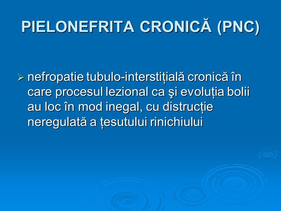 PIELONEFRITA CRONICĂ (PNC) nefropatie tubulo-interstiţială cronică în care procesul lezional ca şi evoluţia bolii au loc în mod inegal, cu distrucţie