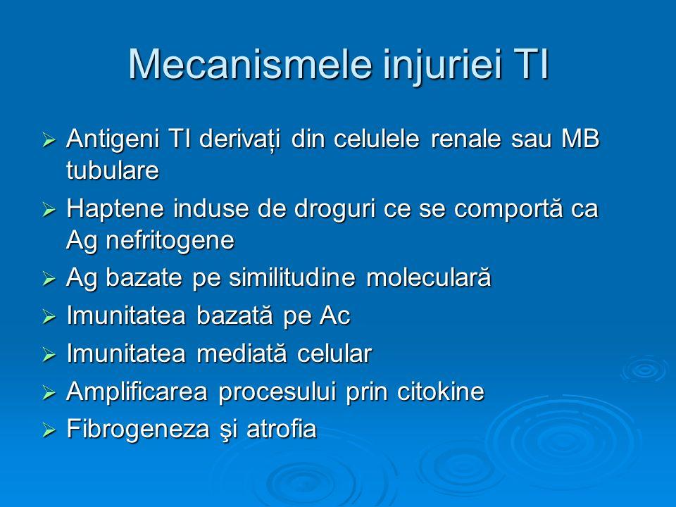 Mecanismele injuriei TI Antigeni TI derivaţi din celulele renale sau MB tubulare Antigeni TI derivaţi din celulele renale sau MB tubulare Haptene indu