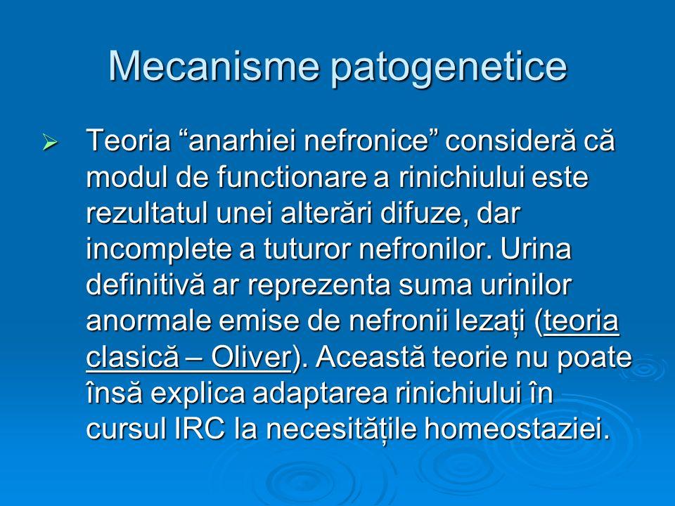 Mecanisme patogenetice Teoria anarhiei nefronice consideră că modul de functionare a rinichiului este rezultatul unei alterări difuze, dar incomplete