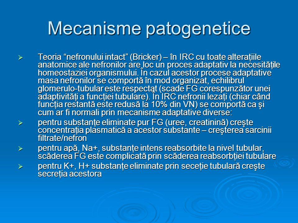 Mecanisme patogenetice Teoria nefronului intact (Bricker) – în IRC cu toate alteraţiile anatomice ale nefronilor are loc un proces adaptativ la necesi
