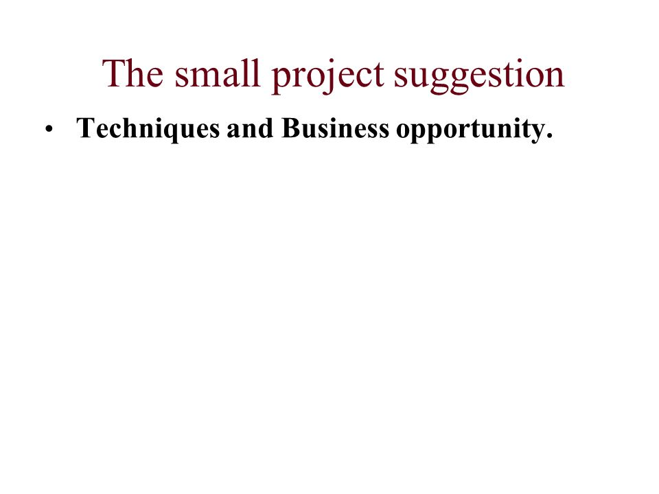 The small project suggestion Techniques and Business opportunity.