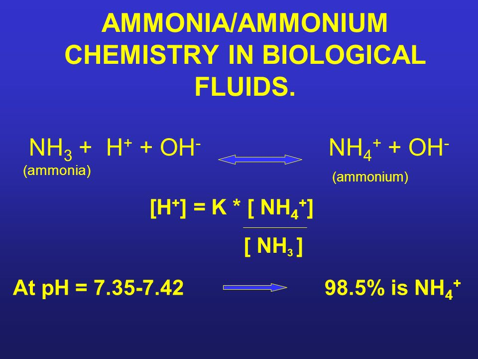 AMMONIA/AMMONIUM CHEMISTRY IN BIOLOGICAL FLUIDS. [H + ] = K * [ NH 4 + ] [ NH 3 ] At pH = 7.35-7.42 98.5% is NH 4 + NH 3 + H + + OH - NH 4 + + OH - (a